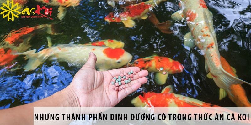 Những Thành Phần Dinh Dưỡng Có Trong Thức ăn Cá Koi