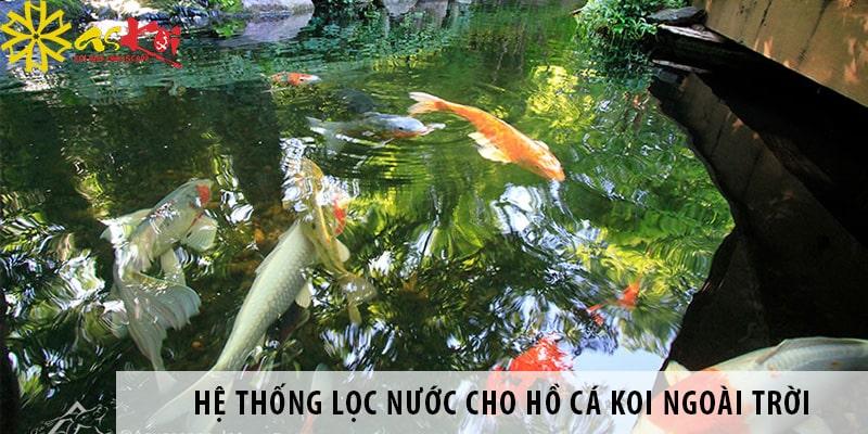 Xây Dựng Và Cải Tạo Hệ Thống Lọc Nước Cho Hồ Cá Koi Ngoài Trời